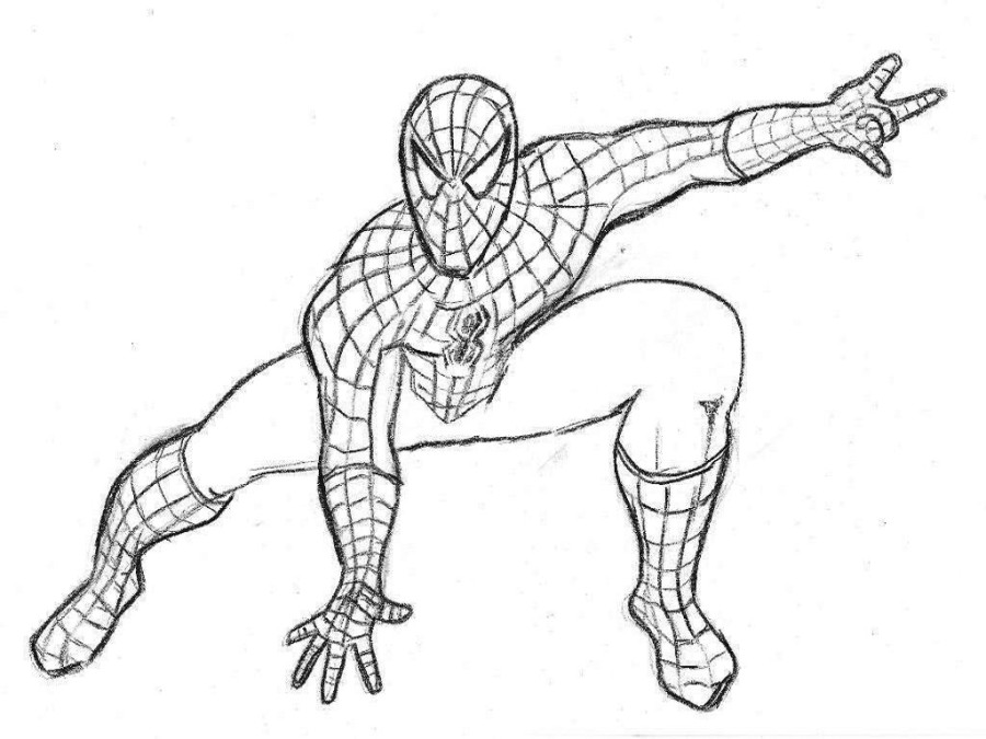 900x675 Spiderman Drawing Book