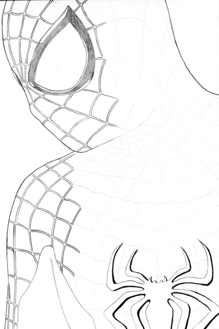 Spiderman Head Drawing