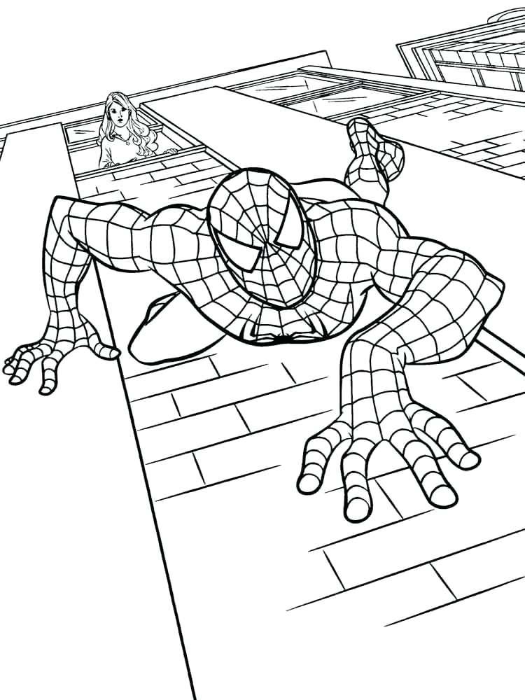 Spiderman Logo Drawing