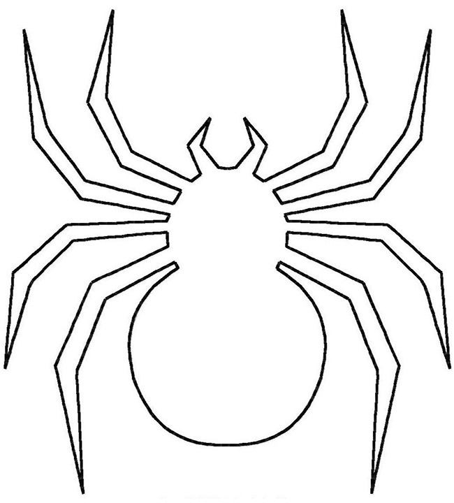 650x720 Drawn Spider Simple