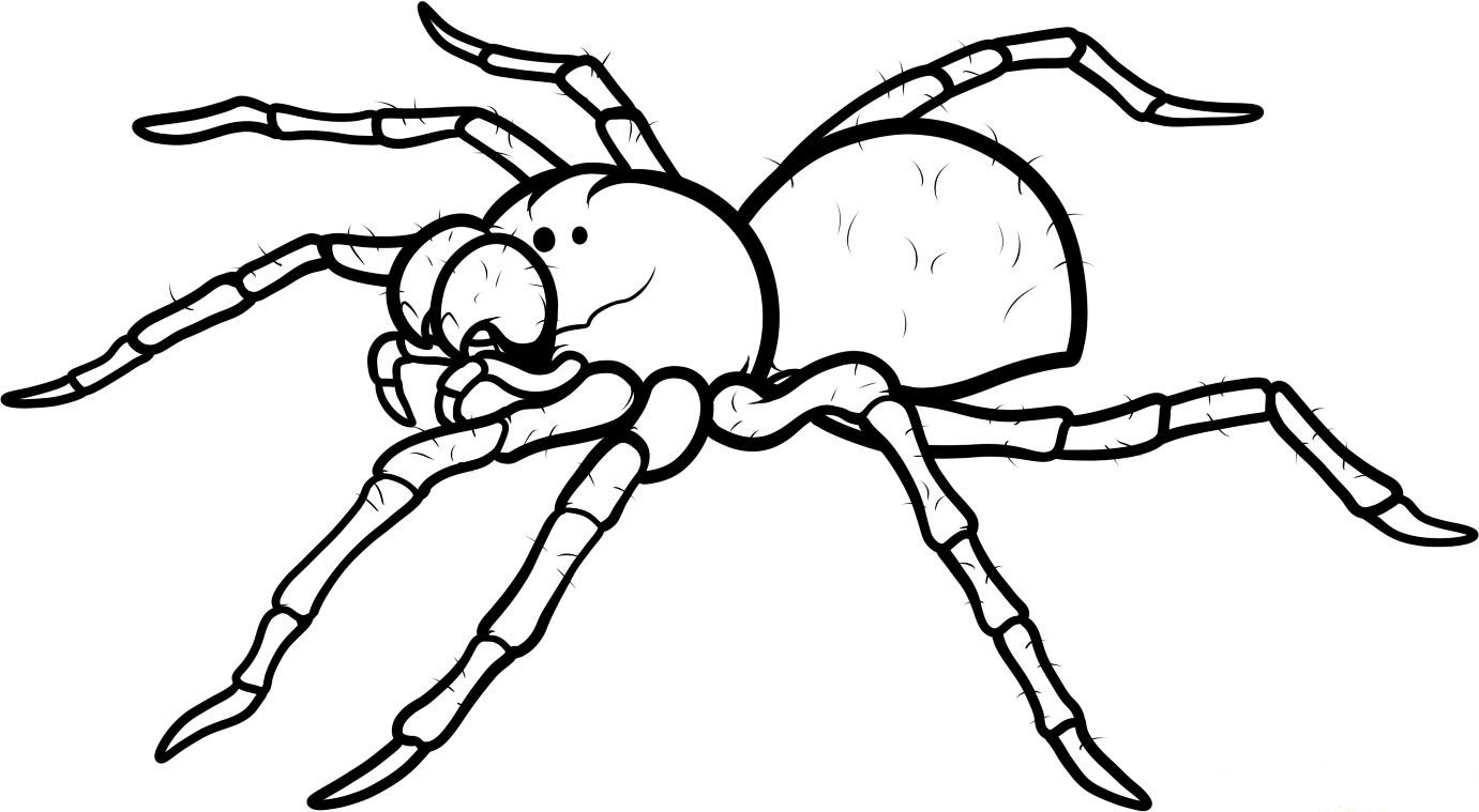 1381x759 Pin Drawn Spider Man Black And White 5. Full Size Of Filmprintable