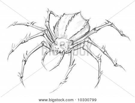 450x344 Drawn Pencil Spider