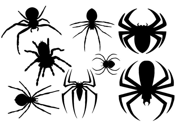 700x490 Free Spider Silhouette Vector