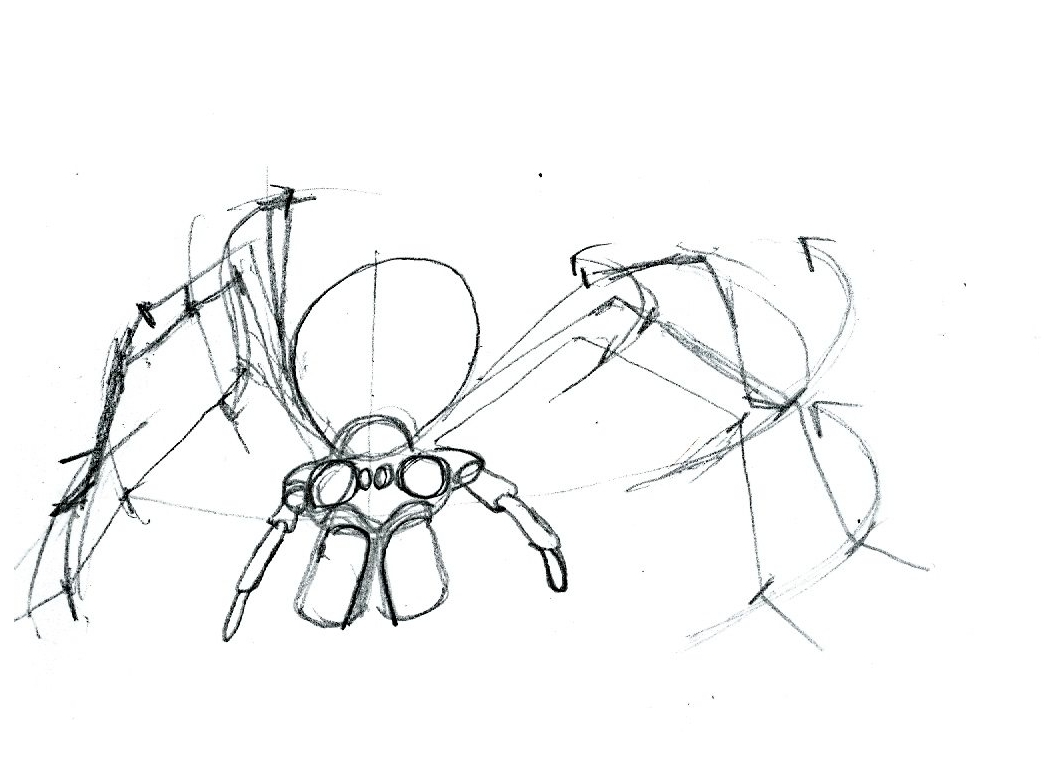 1044x764 How To Draw A Spider Tutorial