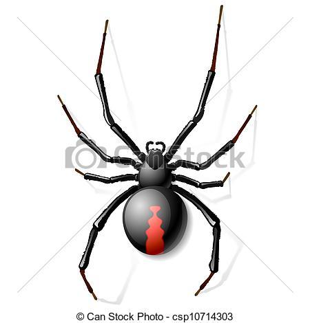 450x470 Black Widow Spider Art Group