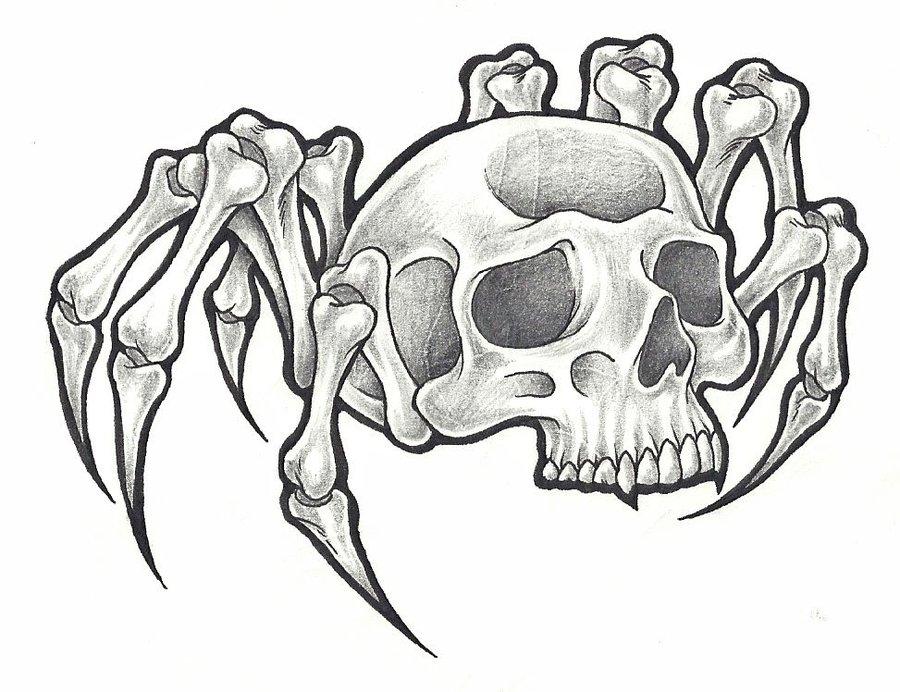 900x692 Skull Spider By Blvqwulph