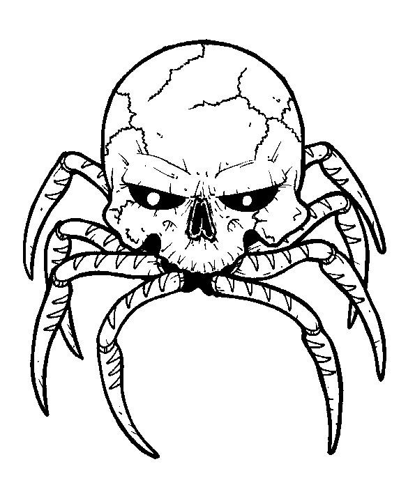 595x719 Spider Skull By Dementedink