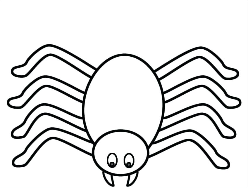 848x644 Spider Web Coloring Sheet A Drawing Funnel Colouring Pages Murs