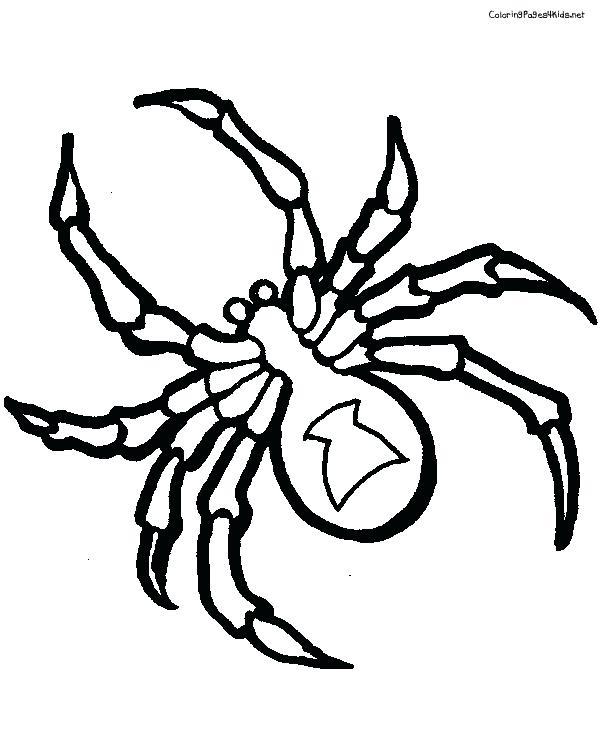 600x756 Tarantula Coloring Page Giant Tarantula Spider Coloring Page