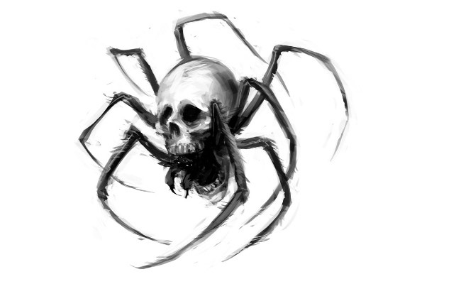 650x400 Collection Of Black Spider Tattoo Sketch