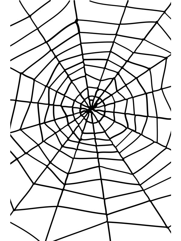 600x800 Giant 5ft Spider Web With Spider Halloween Fancy Dress Costume