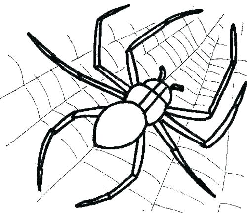 500x432 Spider Coloring Book Plus Spider Web Coloring Spiderman Coloring