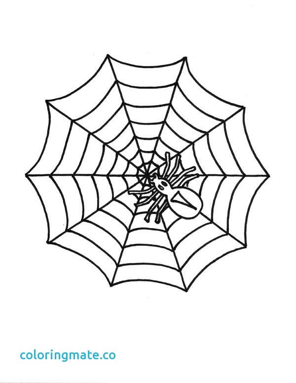 600x776 Spider Web Coloring Page Lovely 48 Best Table Project Reference