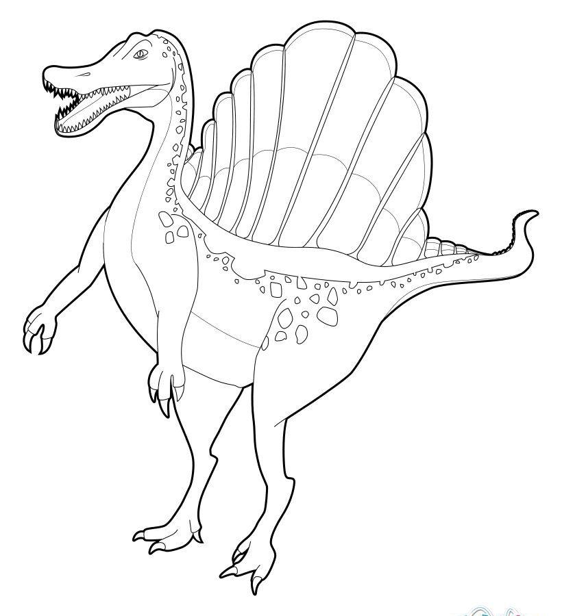 Spinosaurus Drawing At Getdrawings Com