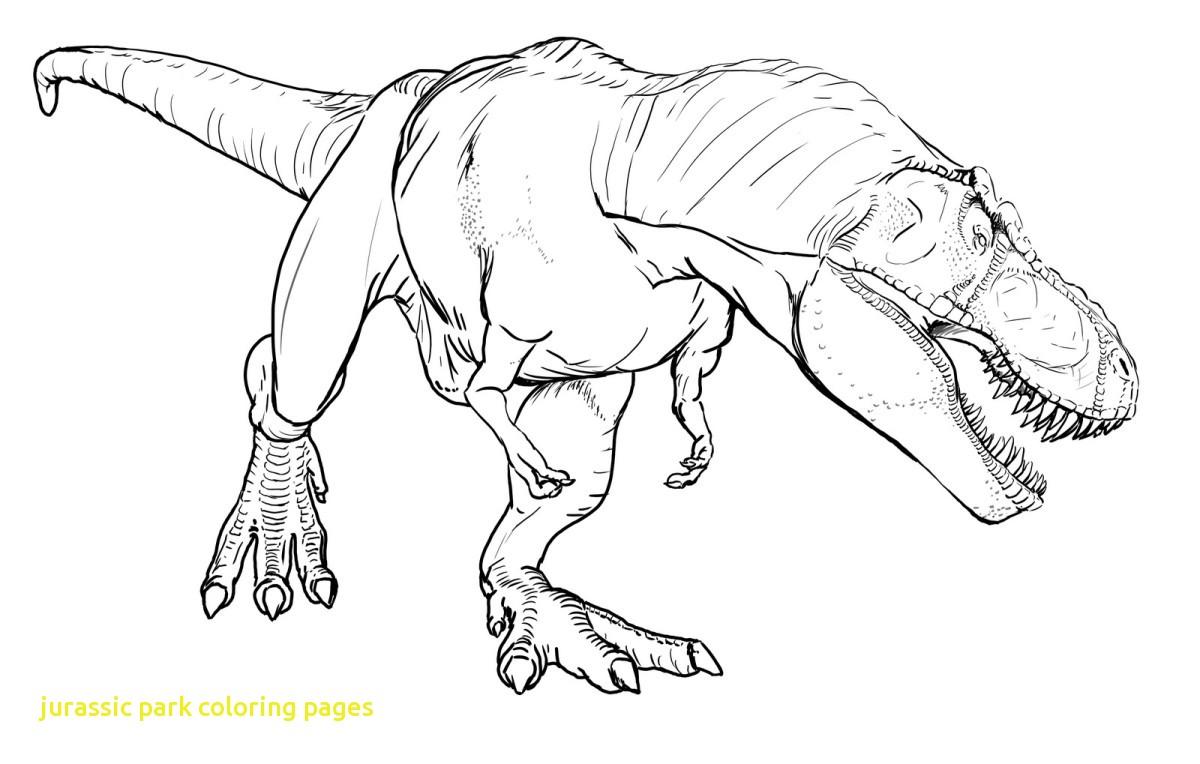Spinosaurus Drawing At GetDrawings
