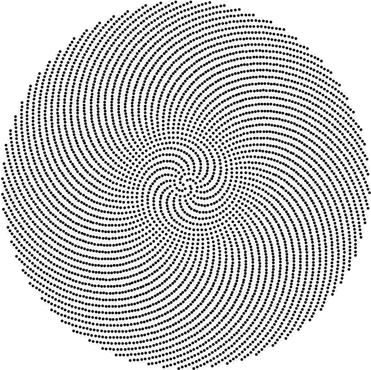 741x739 prime phyllotaxis spirals maxwell39s demon