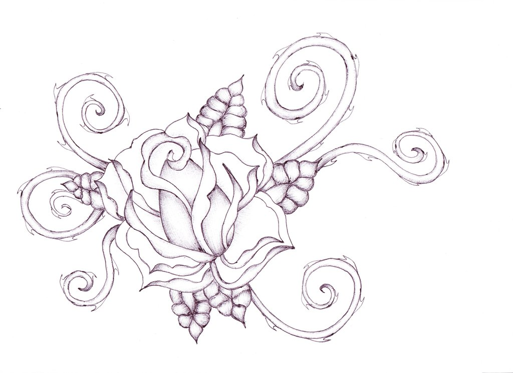 1024x745 Roses With Thorns Drawings Rose Tattoo Spiral Thorns By