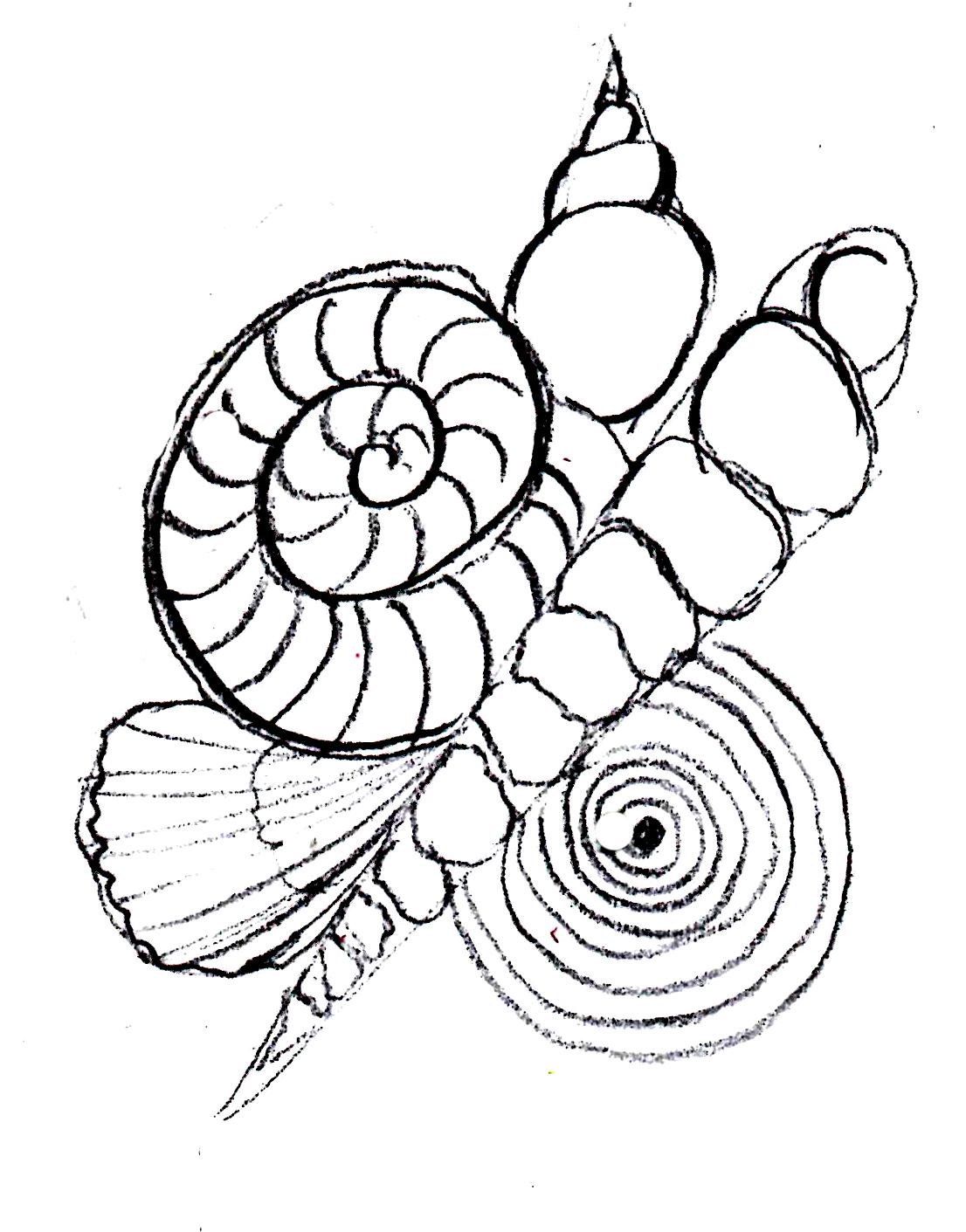 1106x1411 The Sketchbook Challenge Aprils Theme Spirals! Drawing