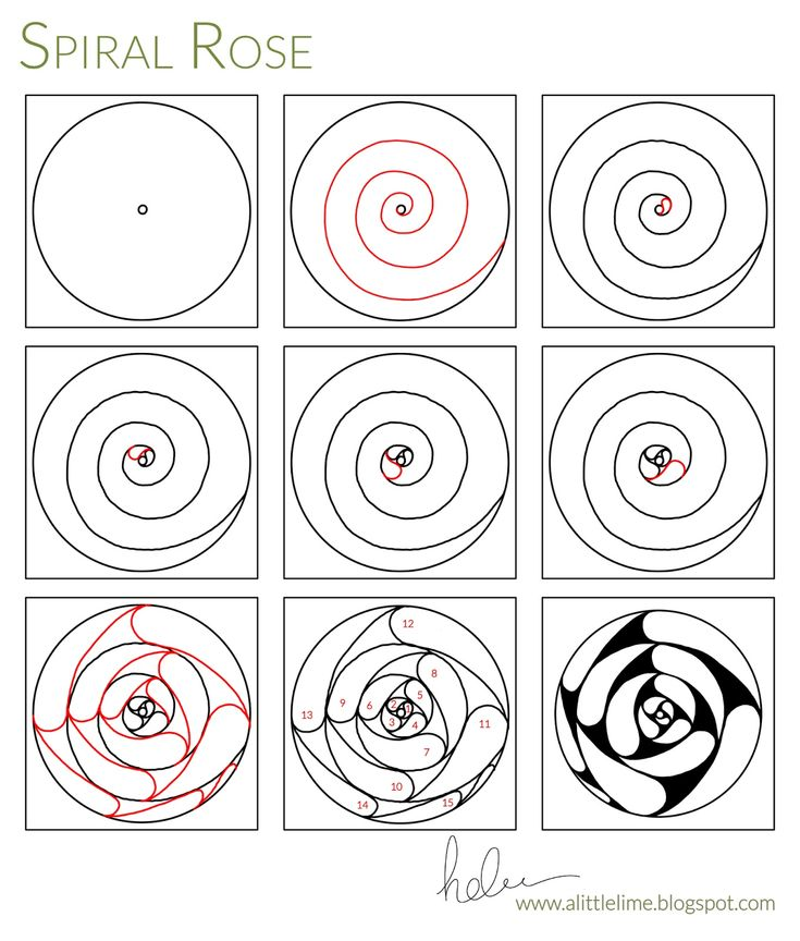 735x864 Best Spiral Drawing Ideas On Types Of Buns
