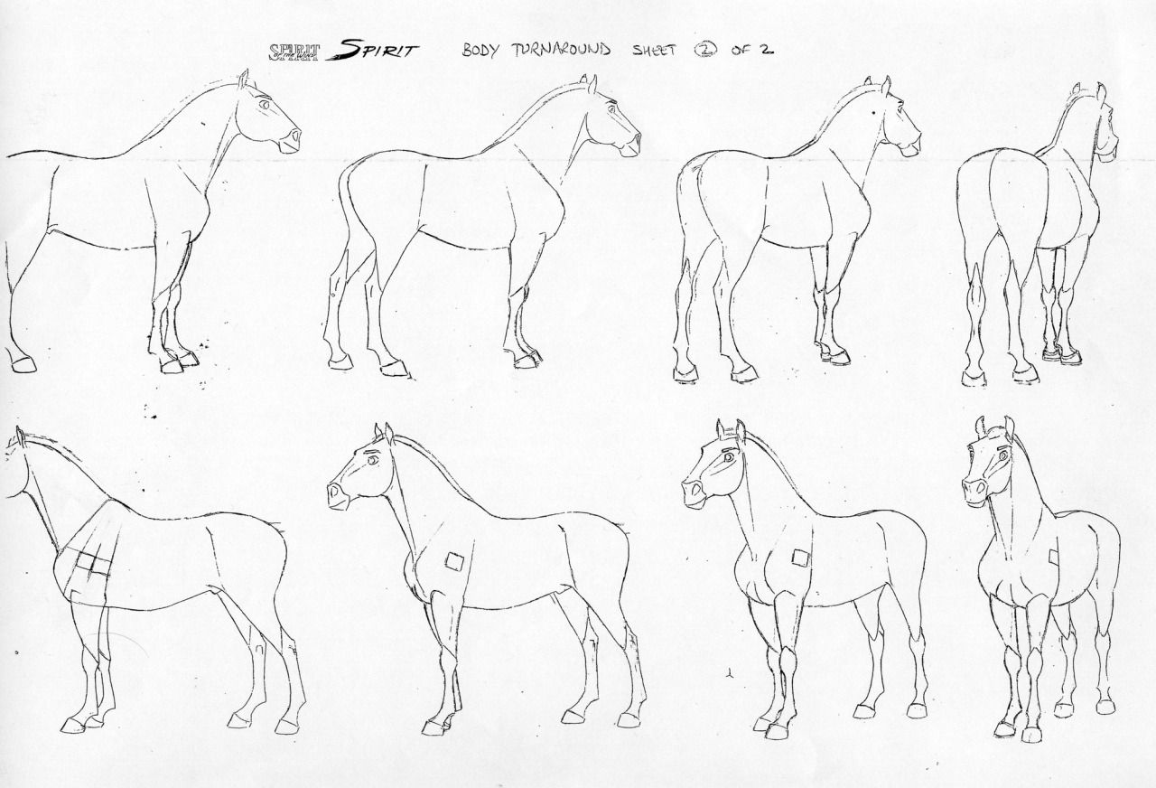 1280x872 2d Traditional Animation Animals 2d, Animation