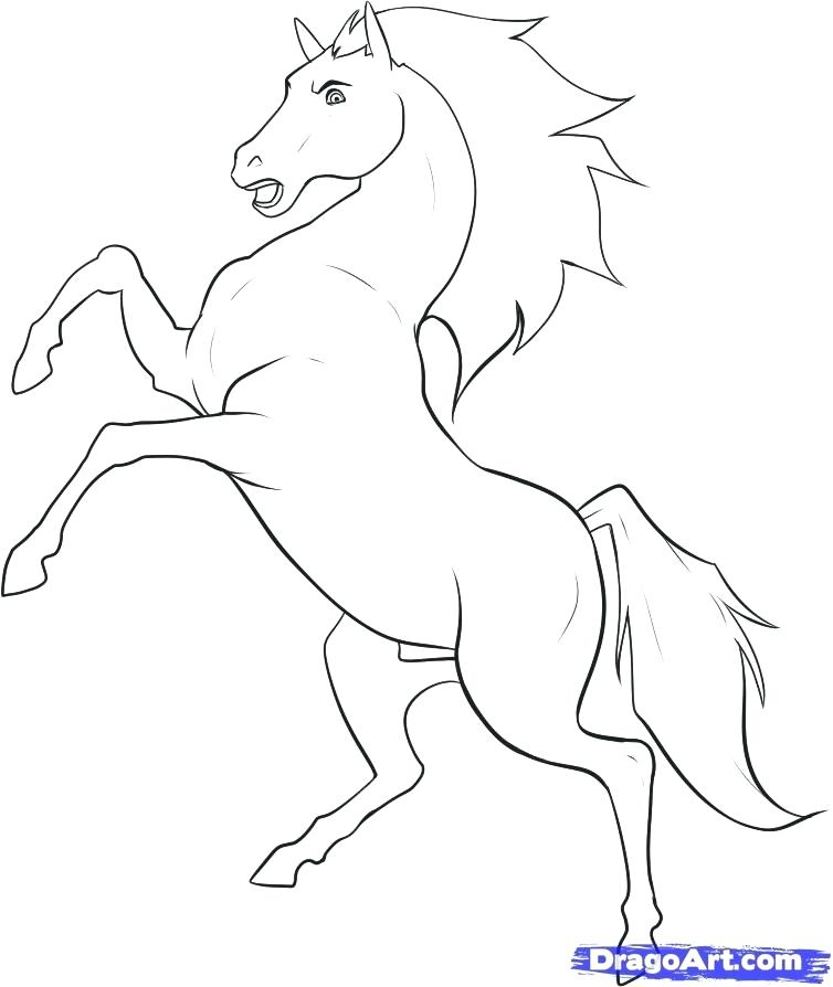 Spirit Stallion Of The Cimarron Drawing at GetDrawings ...