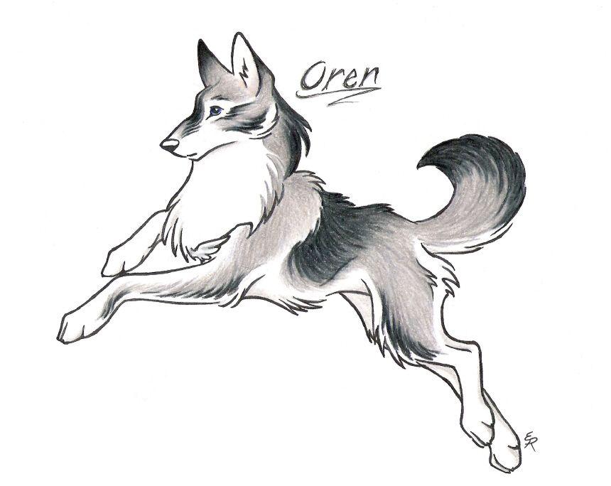 860x684 Wild Spirit Wolf Wild Spirit Wolf Wolves