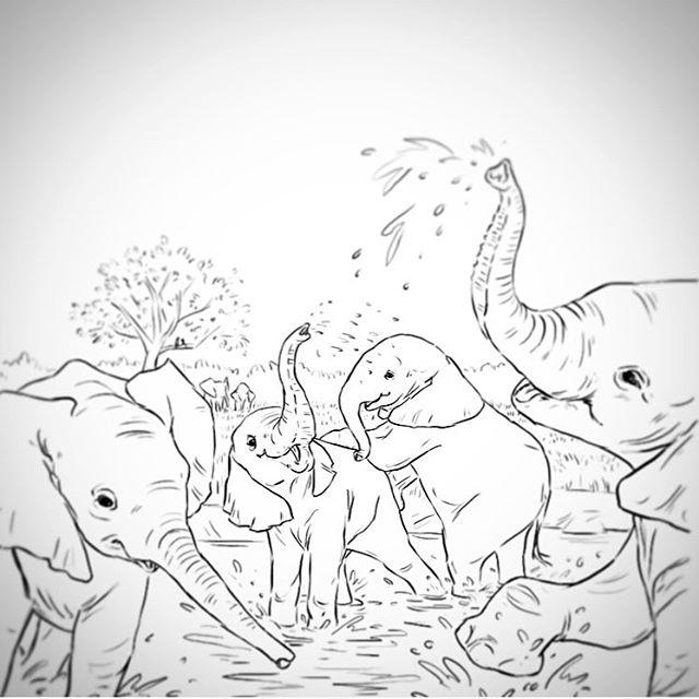 640x640 Splish Splash, Elephants Taking A Bath