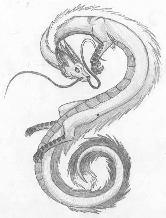 582x765 Fox Dragon By Spooky Delirium