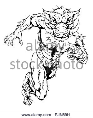 300x377 Drawing Of A Boar Animal Character Or Sports Mascot Stock Photo