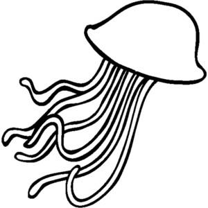 300x300 Spotlight Jellyfish Outline Polyvore