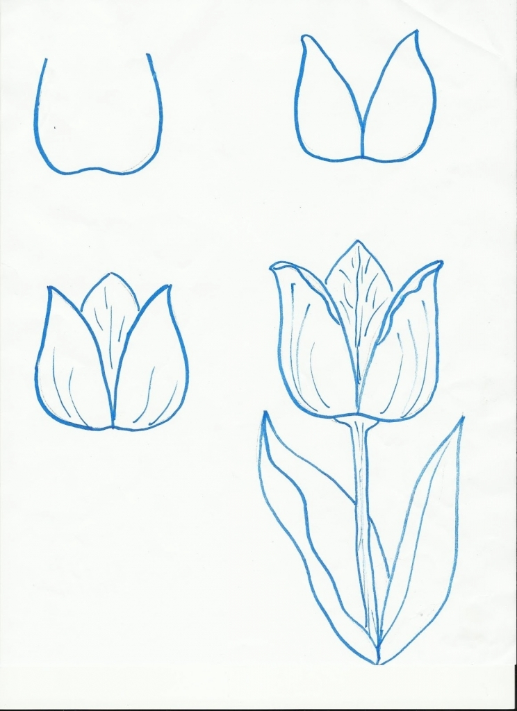 744x1024 How To Draw A Flower Step By Step Easy More Flowers For Spring Art