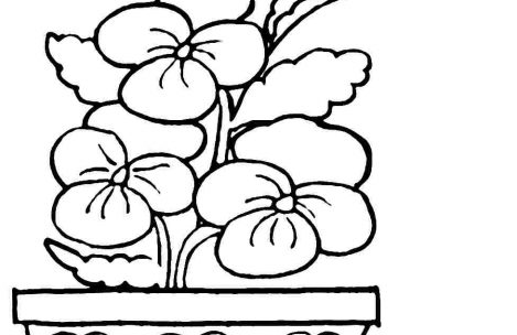 469x304 Easy Spring Coloring Pages For Boys Just Colorings