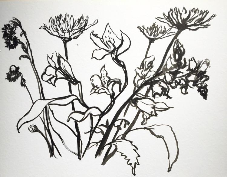 750x585 Pearl Rosen Golden Spring Drawings
