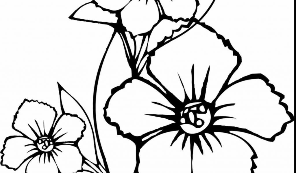 1024x600 Awesome Printable Coloring Pages For Gallery Awesome Spring