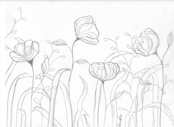 600x436 Spring Flowers Sketchdrawing