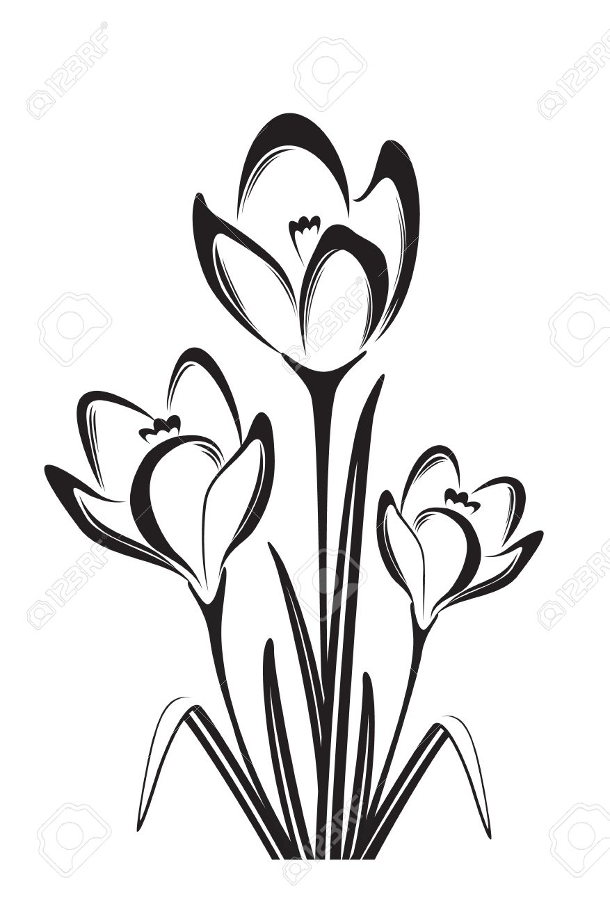 Spring Flower Drawing