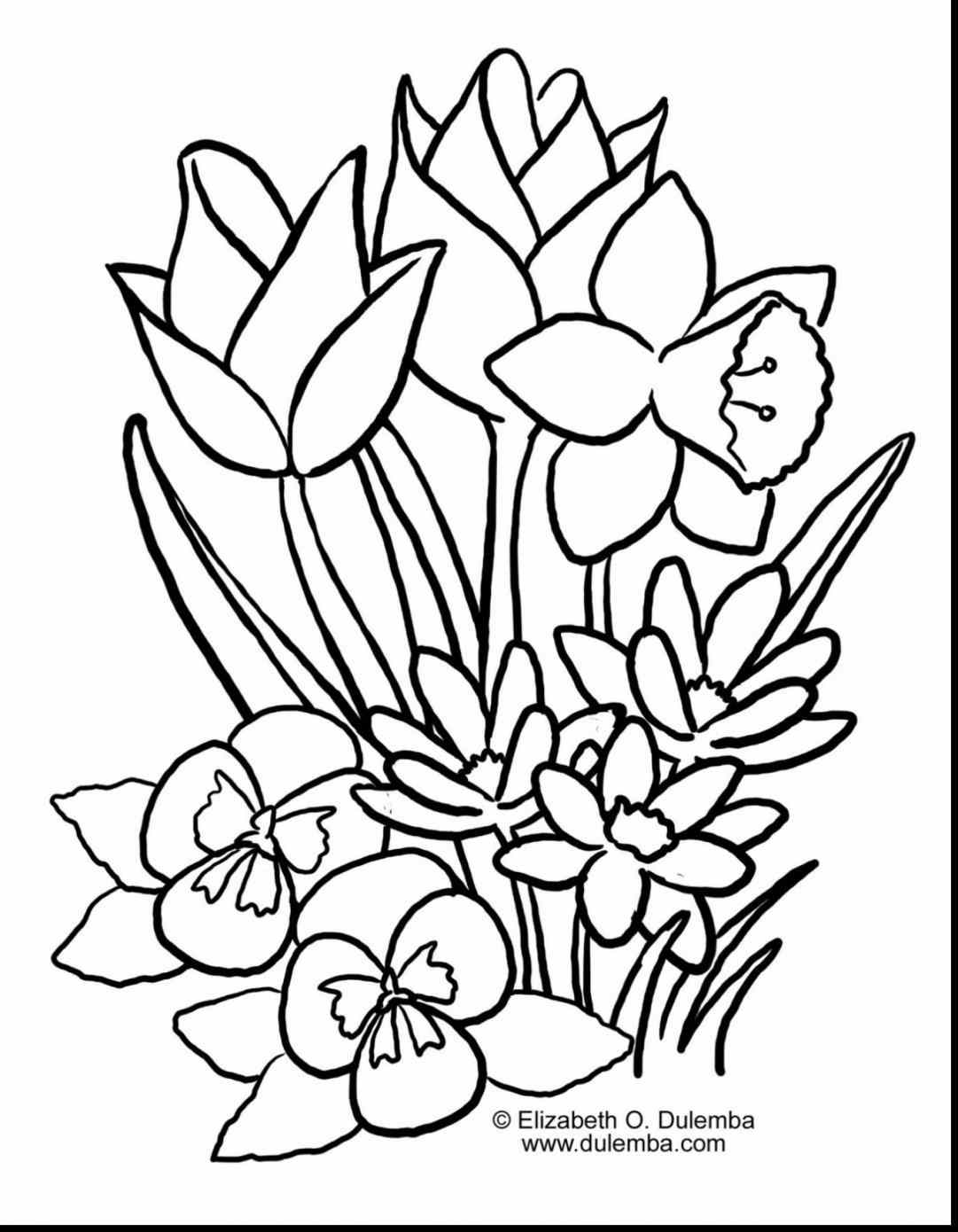 1081x1390 Drawing Ideas Coloring Pages S Spectacular Sping Easter Displays