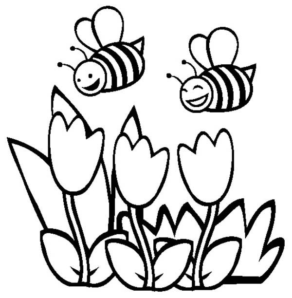 600x612 Spring Flower Coloring Pages