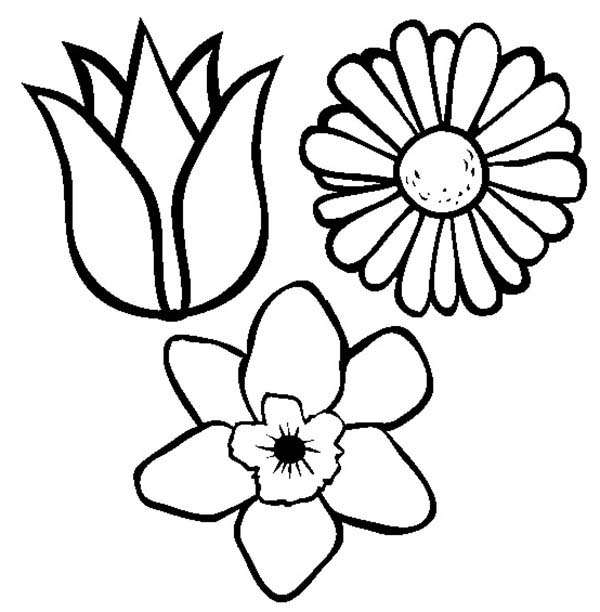 600x612 Spring Flowers Coloring Pages 9396