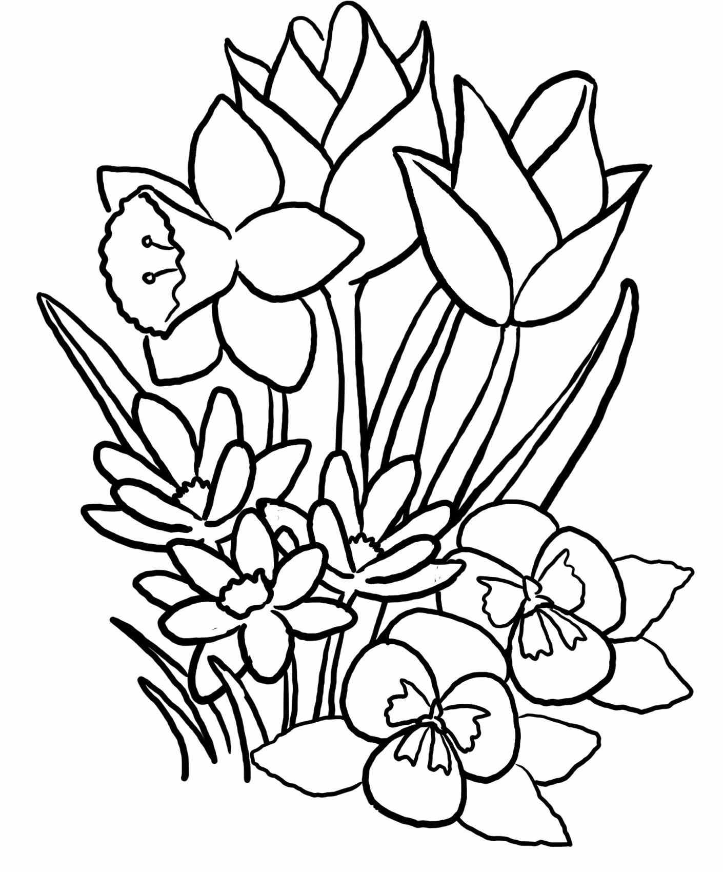 How to draw spring flowers step by step choice image flower how to draw spring flowers gallery flower decoration ideas spring flower drawing at getdrawings free for mightylinksfo