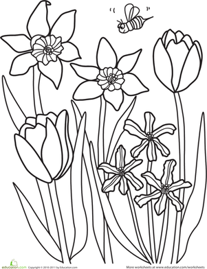 301x392 Color The Spring Flowers Worksheet
