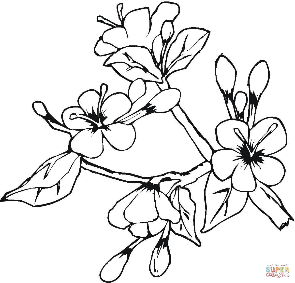 1200x1153 Easter Spring Flowers Coloring Page Free Printable Coloring Pages