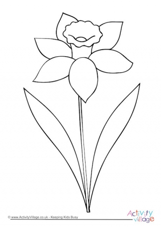 320x452 Flower Colouring Pages