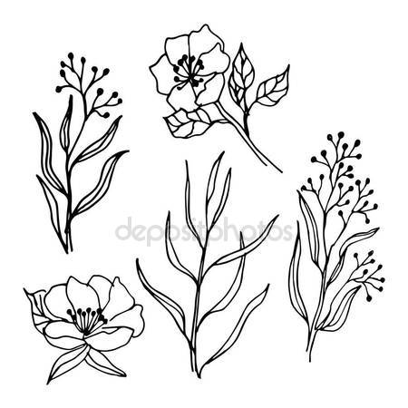 450x450 Spring Flowers Branches Line Art Drawing Set Stock Vector