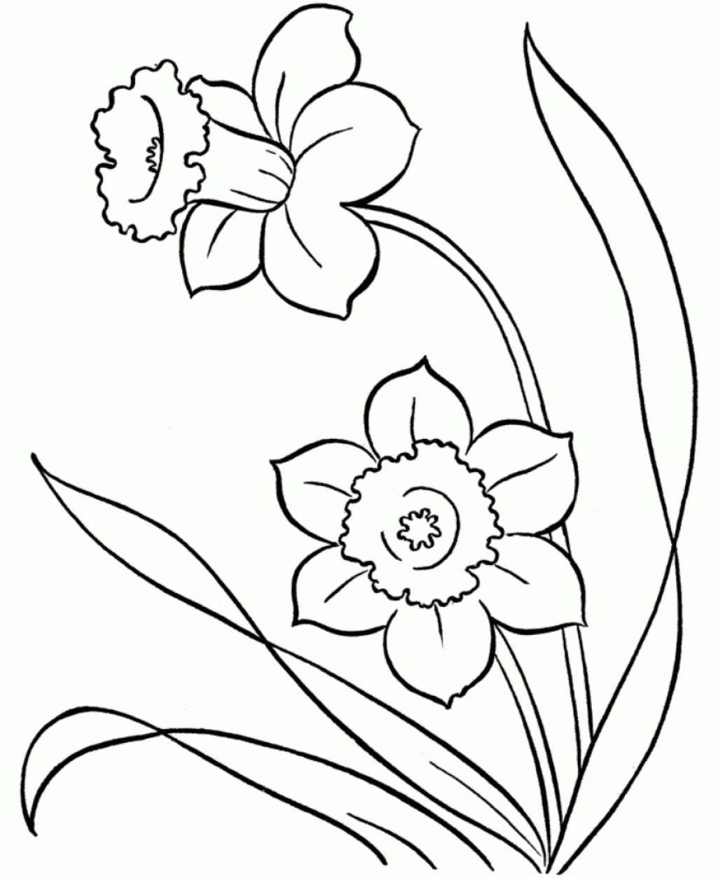 How to draw spring flowers images flower decoration ideas how to draw spring flowers images flower decoration ideas how to draw spring flowers step by mightylinksfo
