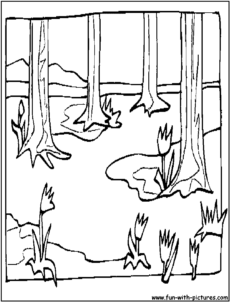 800x1050 Spring Landscape Coloring Page Free Coloring Pages For Kids