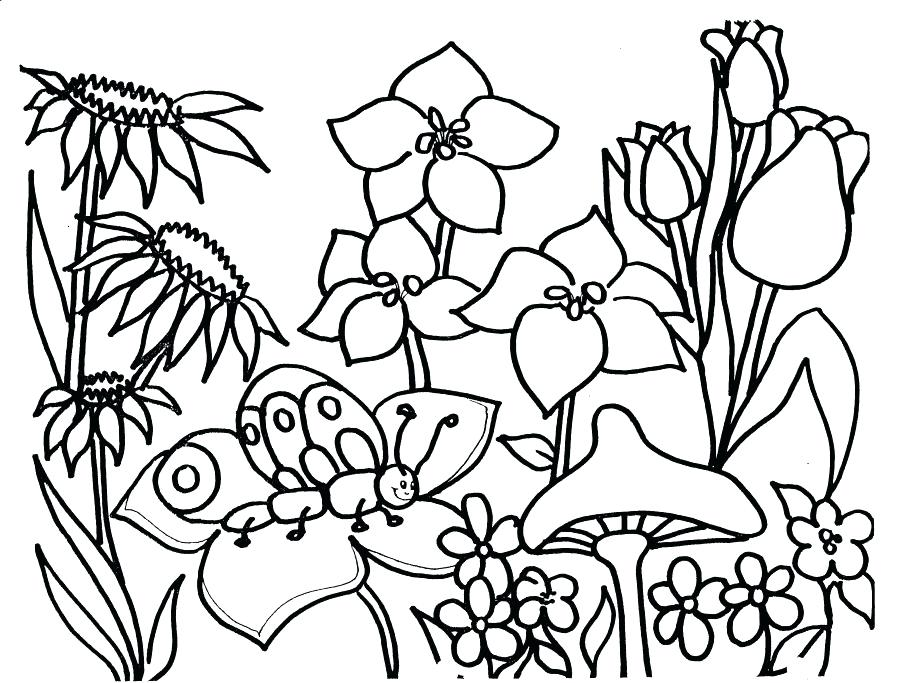 906x683 Spring Printable Coloring Pages Coloring Page Spring Season Nature