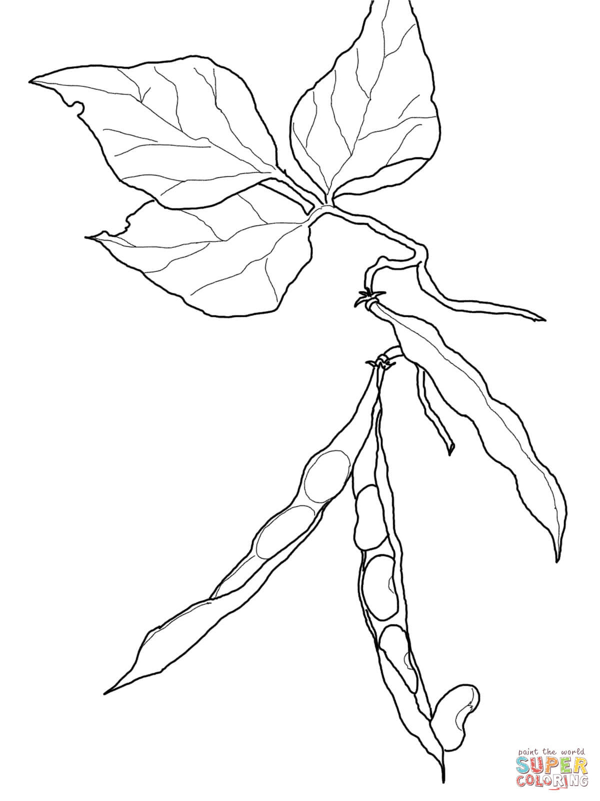 sprout coloring pages - photo#22