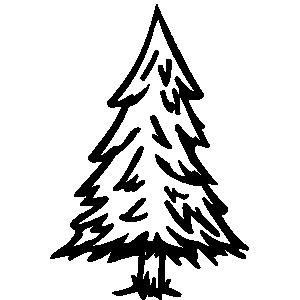 300x300 Spruce Tree Clipart Christmas Tree Black And White Evergreen Trees