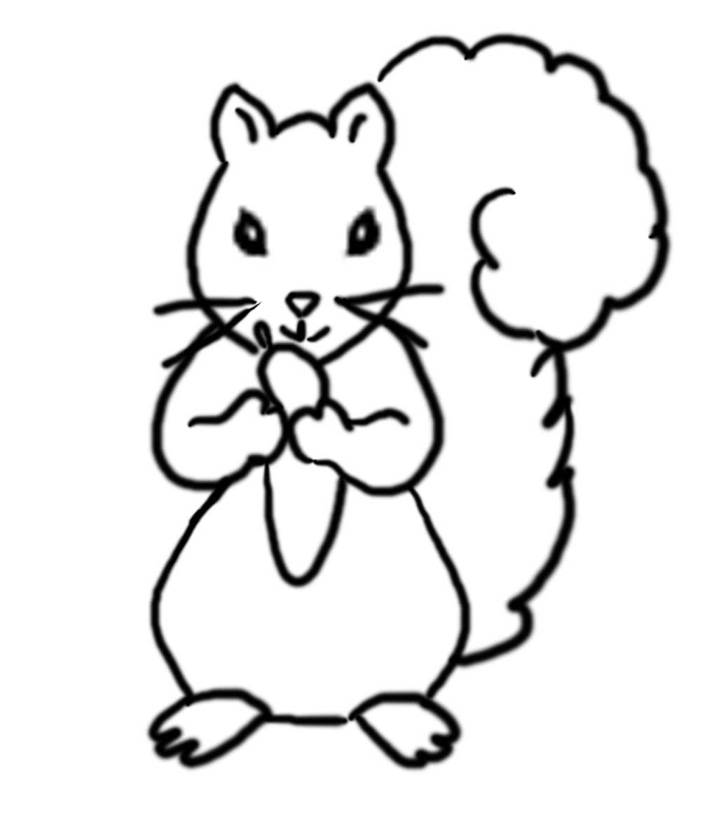1039x1200 Grey Squirrel Coloring Page, Grey Squirrel Coloring Pagejpg